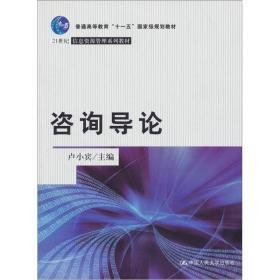 咨询导论/21世纪信息资源管理系列教材
