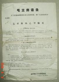 毛主席语录   怎样防治乙型脑炎   中草药   中药   益阳地区卫生防疫站   1972年   宣传单   长37.4cm宽26cm