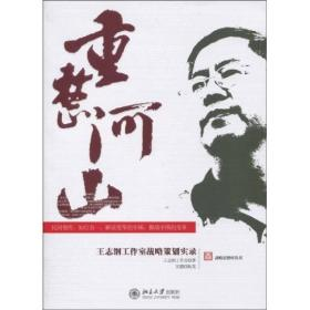 重整河山:王志纲工作室战略策划实录