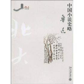 中国小说史略/北大大课堂