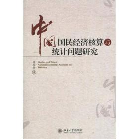 中国国民经济核算与统计问题研究