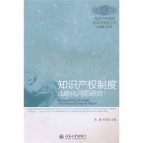 二手知识产权制度战略化问题研究 张勤,朱雪忠 北京大学出版社