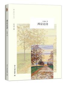 新诗研究丛书:两京论诗