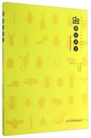虫行天下:昆虫主题装饰绘画作品