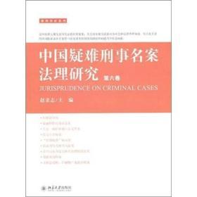 中国疑难刑事名案法理研究:第六卷