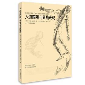 英国皇家学院艺术设计专业绘画基础教材:人体解剖与素描表现