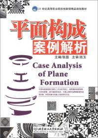 正版二手平面构成案例解析张磊北京理工大学出版社9787564054250