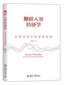 鞭辟入里经济学——中国改革年代的新思维