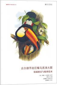古尔德手绘巨嘴鸟高清大图:装裱册页与临摹范本