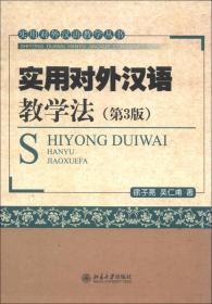 实用对外汉语教学丛书:实用对外汉语教学法