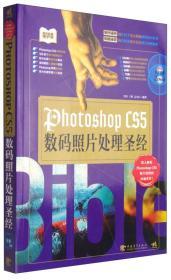 PHOTOSHOPCS5数码照片处理圣经