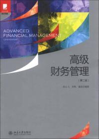 高级财务管理(第2版)