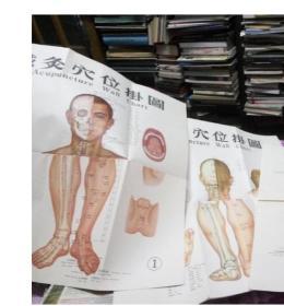 针灸穴位挂图-1971年版1989年印刷52x109.2cmx~2张
