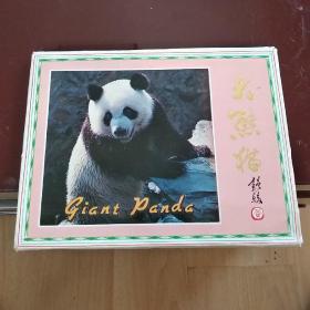 大熊猫明信片(全套10枚)中国画报社