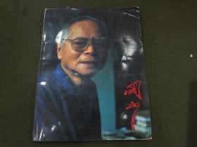 《关山月——陈学思摄影集》