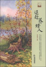 中国书籍文学馆.小说林--追赶养蜂人【精装】