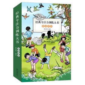 童立方·经典专注力训练大书系列:猜谜游戏(套装全10册)