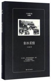 似水柔情(珍藏版)/王小波全集