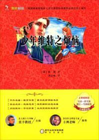 阳光阅读 少年维特之烦恼(名师精讲版)