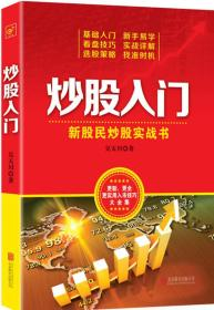 炒股入门:新股民炒股实战书