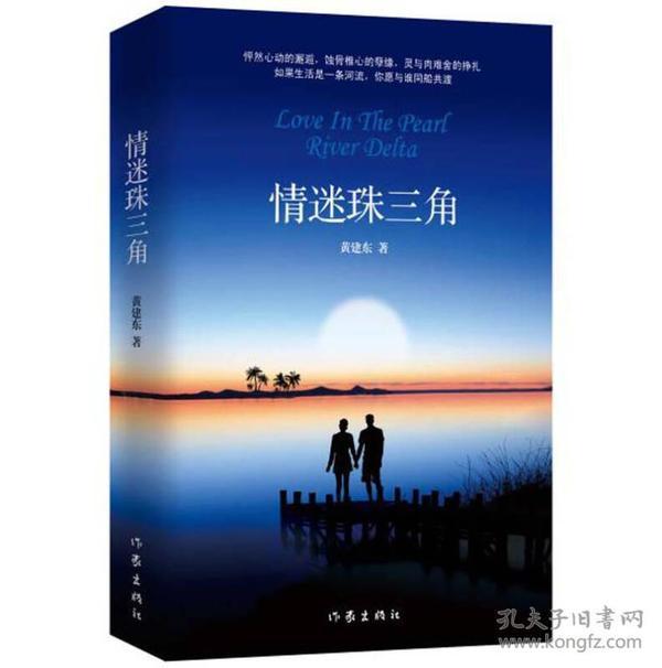 中国当代长篇小说:情迷珠三角(长篇小说)