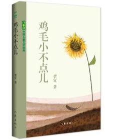 中国儿童文学经典:鸡毛小不点儿