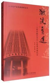文化产业经典案例丛书 激流勇进:上海话剧艺术中心改革发展纪实