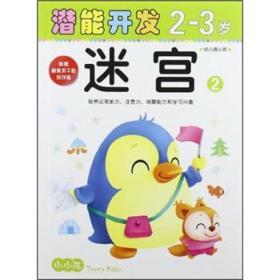 小小孩潜能开发丛书-迷宫2-3岁②