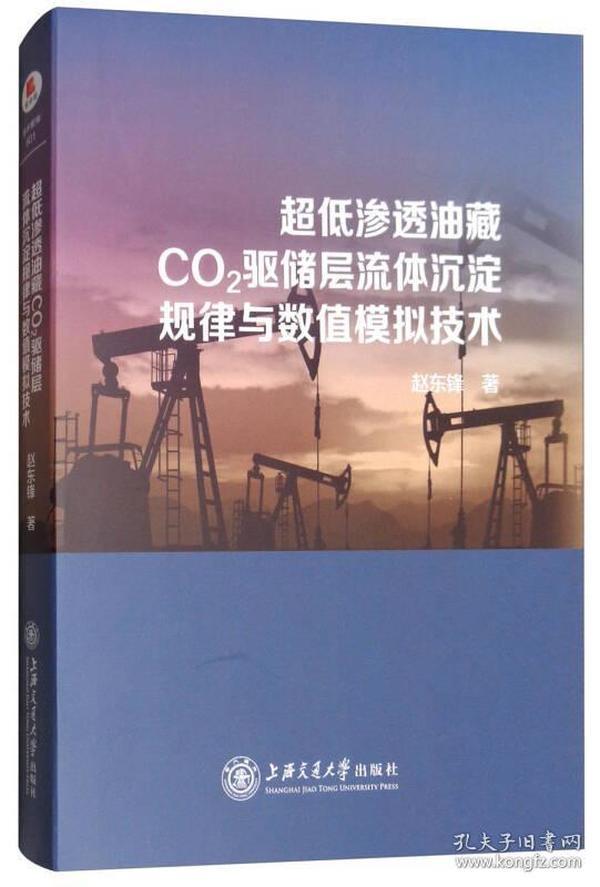 超低渗透油藏CO2驱储层流体沉淀规律与数值模拟技术 专著 赵东锋著 chao di sh