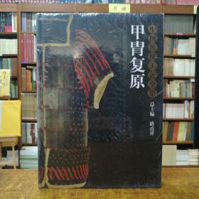 中国传统工艺全集:甲胄复原