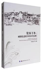 资本下乡:城镇化进程中的乡村治理