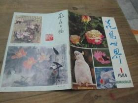 花鸟世界《1984年第1期》创刊号