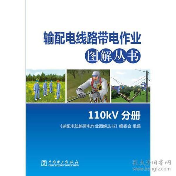 输配电线路带电作业图解丛书 110kV分册