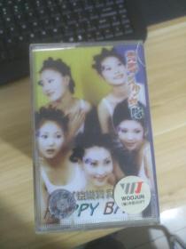 磁带  青春美少女队