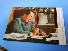 我们伟大的领主毛主席画片
