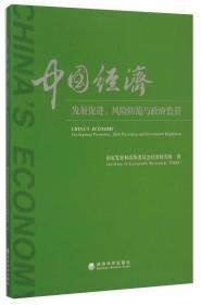 中国经济:发展促进、风险防范与政府监管