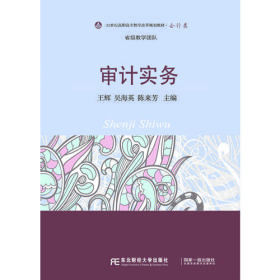 正版二手审计实务王辉吴海英陈来芳东北财经大学出版社9787565419423