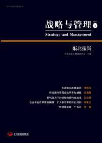 战略与管理 1:东北振兴