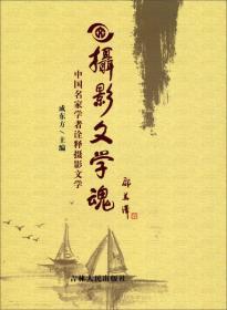 摄影文学魂:中国名家学者诠释摄影文学