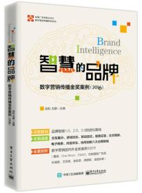 智慧的品牌:数字营销传播金奖案例(2016)