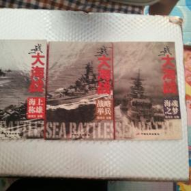 二战大海战(海上称雄、战略举兵、海魂之梦)3册