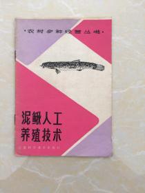 泥鳅人工养殖技术