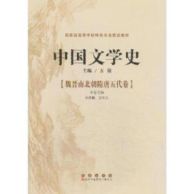 中国文学史--魏晋南北朝隋唐五代卷