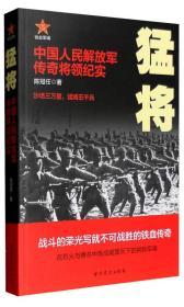 猛将:中国人民解放军传奇将领纪实