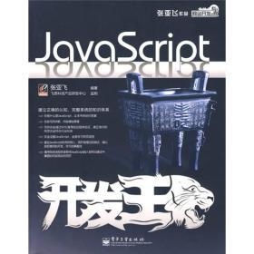网站开发专家:JavaScript开发王