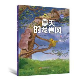 小考拉的故事(精装绘本) 夏天的龙卷风