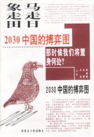 马走日.象走田-2030中国的搏弈图