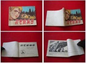 《羽毛蛇秘密》无封底,贵州八十年代出版7品,8580号,连环画