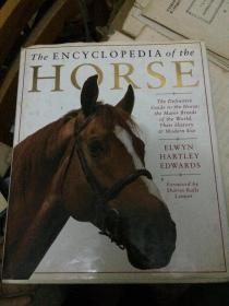 The ENCYCLOPEDIA of the HORSE 马百科全书 DK 英文原装正版 全彩页