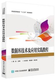 【正版】数据库技术及应用实践教程 周洁主编